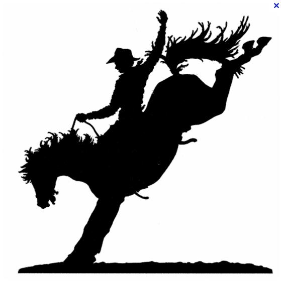 Name:  buckinghorse.jpg Views: 260 Size:  69.2 KB